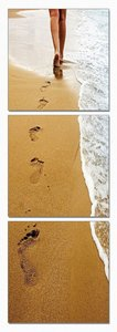 Modrest Footprints 3-Panel Photo Multicolor