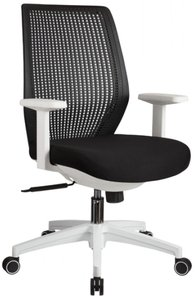 Bayer Modern Office Chair Black And White