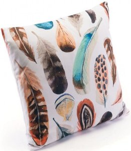Plumas Pillow Multicolor (Set of 2)