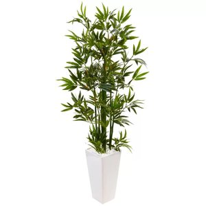 Bamboo Tree In Rectangular Ceramic Planter Green & White