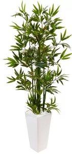Bamboo Tree In Rectangular Ceramic Planter Green & White