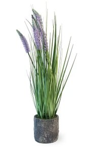 Lavender Grass With Planter Green And Purple
