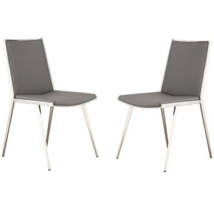 Sarayu Brushed Stainless Steel Dining Chair (Set of 2)