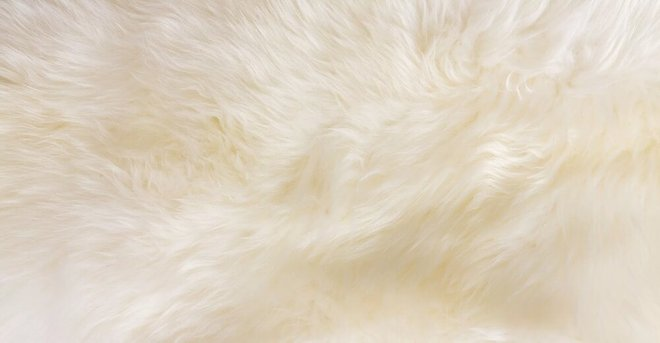 Rent Lanna Sheepwool Throw Rug Ivory Soft Home San