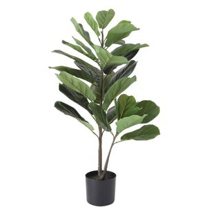 Fiddle Leaf Fig Tree With Pot Black