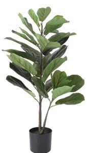 Fiddle Leaf Fig Tree With Pot Black
