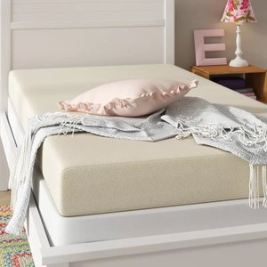 "Wayfair Sleep 6"" Firm Memory Foam Mattress"