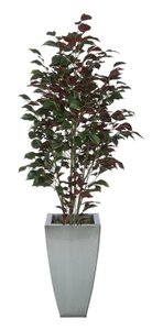 Trent Fabric Ficus Tree